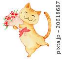 猫 カーネーション 花のイラスト 20618687