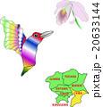 地図の動物 一都六県 千葉 ハチドリⅡ 20633144