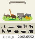 動物園 ベクトル のぼりのイラスト 20636552