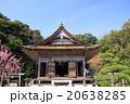 気多大社 神社 気多大神宮の写真 20638285