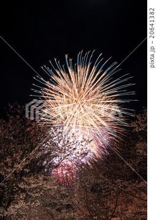 夜桜と花火 20641382