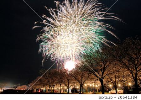 夜桜と花火 20641384