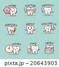 cute cartoon tooth set 20643903