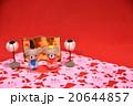 くまちゃんのひな人形左 20644857