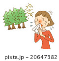 花粉症 くしゃみ アレルギーのイラスト 20647382