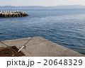 海 釣り 海釣りの写真 20648329