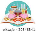 日本 観光 ベクターのイラスト 20648341