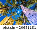 【ハワイ】ホノルル・満月とヤシの木 20651181