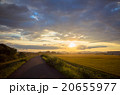 北海道の田園と夕焼け 20655977
