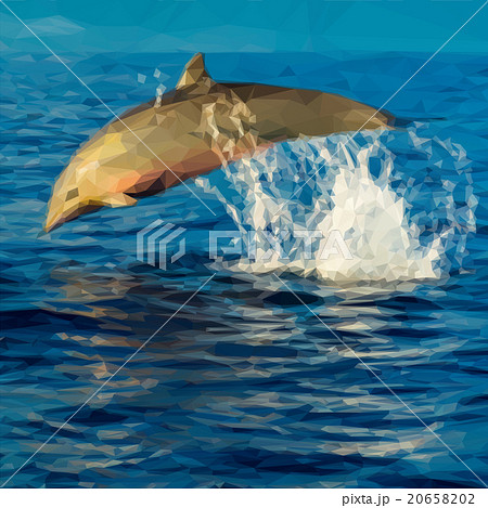 Vector Dolphin Jumping 20658202