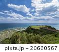 知念岬 知念岬公園 海の写真 20660567