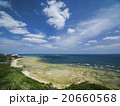 知念岬 海 夏の写真 20660568