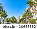 【ハワイ】ワイキキ・カラカウア通り 20663332