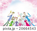 お花見 20664543