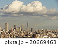 東京都市風景 夕景 東京スカイツリー 池袋 20669463