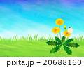 たんぽぽと蝶 20688160