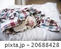 赤ちゃんの小さな足 20688428