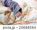 赤ちゃんの手 20688564