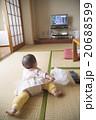 ハイハイする赤ちゃん 20688599
