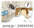 「ジカ熱」のイメージイラスト 20694506