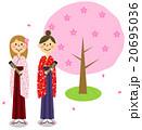 卒業式イメージ 桜の木(女子大生) 20695036