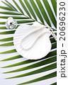 女性小物と夏イメージ 20696230