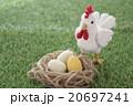 ニワトリと卵(金の卵?入り) 20697241