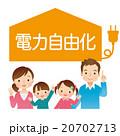 電力自由化 家族 20702713