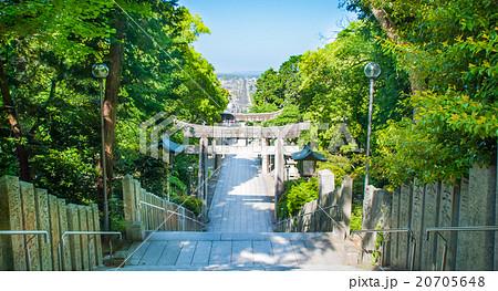 宮地嶽神社 20705648