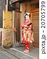 舞妓 20705799