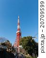 東京タワー タワー 青空の写真 20709599