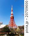 東京タワー タワー 青空の写真 20709600