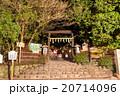 野宮神社 夜 神社の写真 20714096