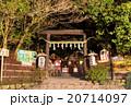 野宮神社 夜 神社の写真 20714097
