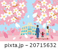 桜 学校 家族のイラスト 20715632