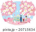 桜 学校 家族のイラスト 20715634