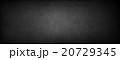 20729345