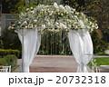 アーチ 挙式 ガーデンの写真 20732318