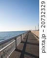 海岸の遊歩道 20732329