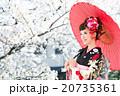 桜 着物 和服の写真 20735361