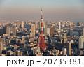 東京の高層ビル群 夕景 20735381