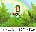 St. Patrick's Fairy 20744519
