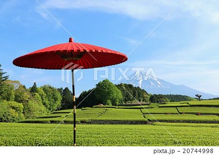富士山 茶畑 和傘 20744998