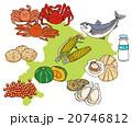 北海道食材セット 20746812