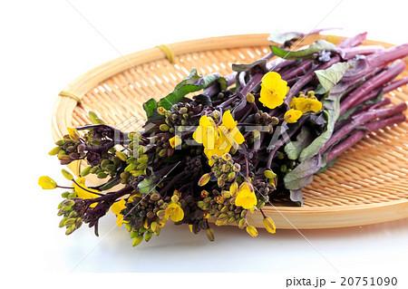 紅菜苔 20751090