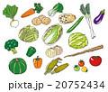 野菜いろいろ 20752434