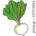野菜 20753003
