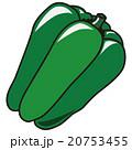 野菜 イラスト ベクターのイラスト 20753455