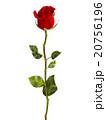 赤 赤い 赤色のイラスト 20756196