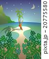 南国の夜 20775580
